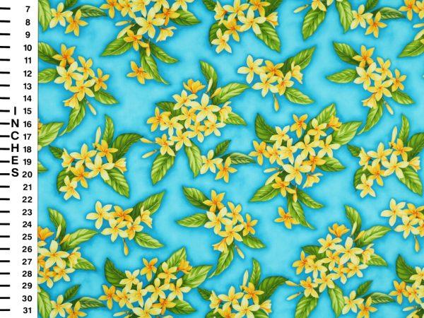 HC10874C - 100% Cotton Fabric