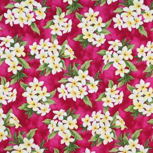 HC10877 - 100% Cotton Fabric